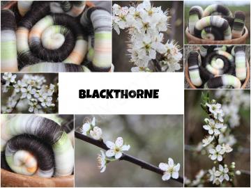 Blackthorne Rolags - 100g